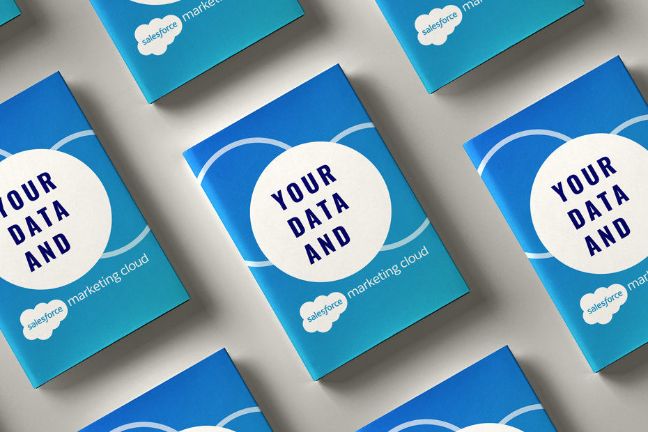 eBook: Your Data and Salesforce Marketing Cloud prepared by DESelect